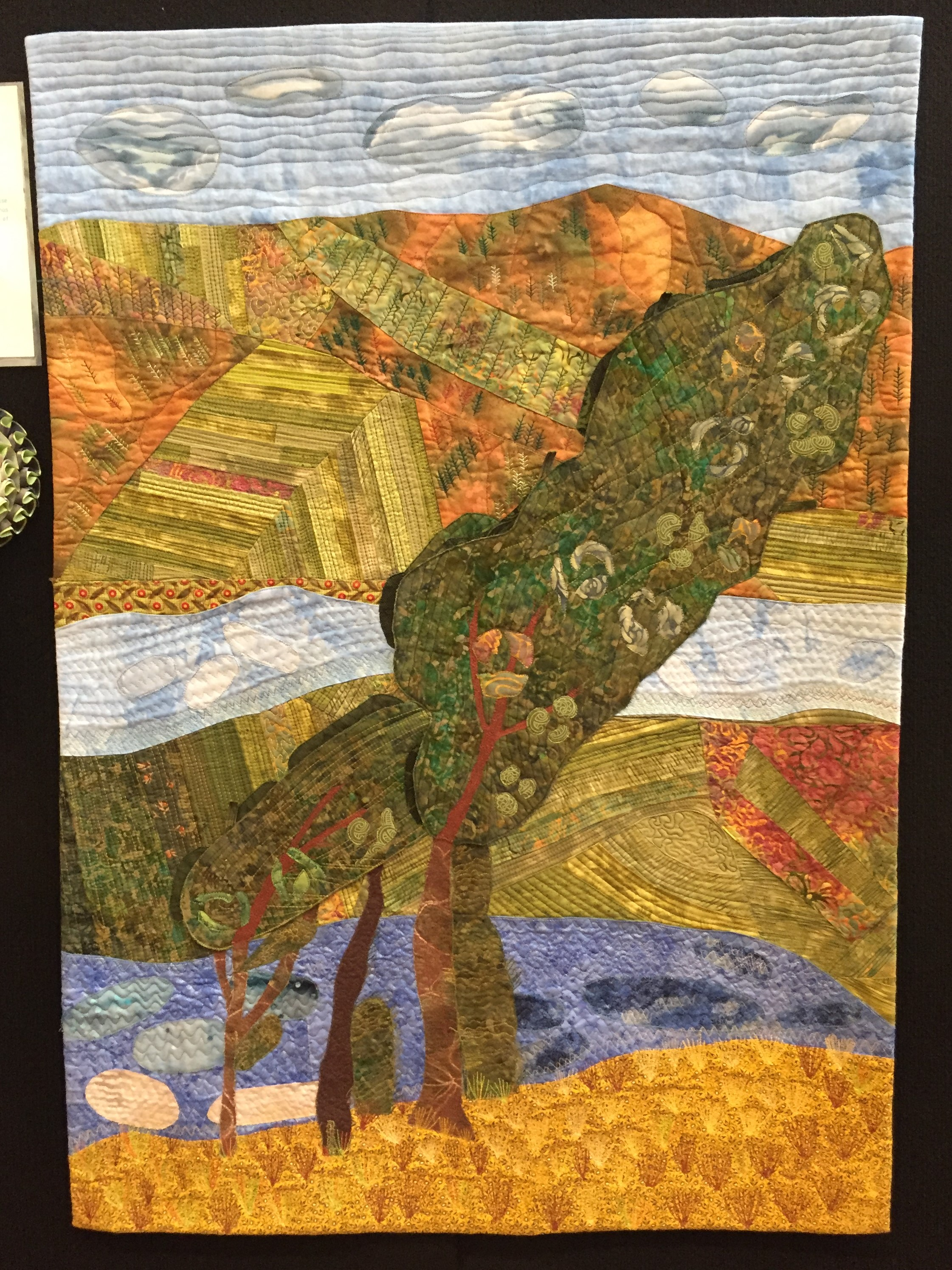 Sou'wester - Maria Rohs - Landscape/ Pictorial MERIT - Sponsored by Mallee Textiles