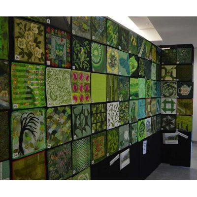 Aotearoa Green Challenge 02